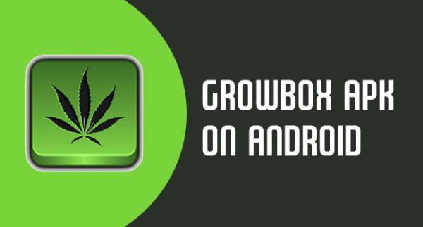 GrowBox Apk download